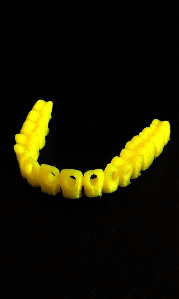 PLA filament print, Leapfrog