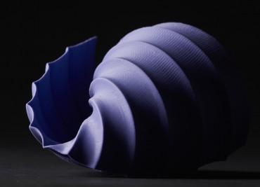purpleshell-landscape- kopie
