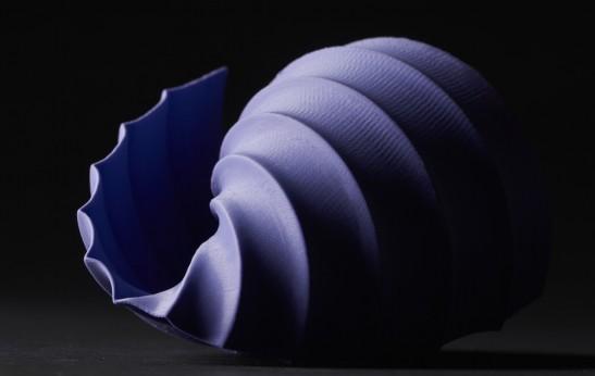purpleshell-landscape-