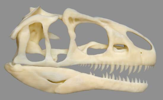 Dinosaur, 3d printing